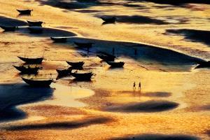 PhotoVivo Silver Medal - Tong Hu (China)  Golden Bay