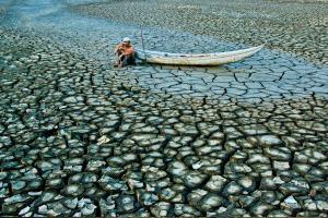PSA HM Ribbons - Truong Huu Hung (Vietnam)  Dry Season