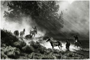 Bugis Photo Cup Circuit Merit Award - Thomas Lang (USA) <br /> Chasing At Dawn