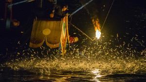 PhotoVivo Gold Medal - Lilo Chen (Taiwan)  Bonfire Fishing