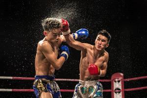 PhotoVivo Gold Medal - Chan Ieong Tam (Macau)  Boxing3