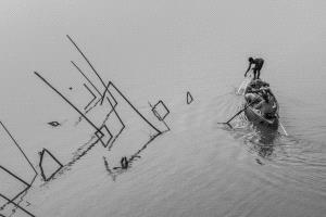 PhotoVivo Gold Medal - Shengwei Dai (China) <br /> Fishing In Water 1