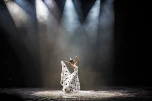BPC Merit Award - Kam Chiu Tam (Canada)  Shangrila Dance