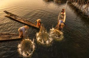 APAS Honor Mention e-certificate - Jing Li (China)  Fishing Life