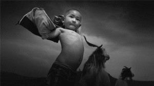 BPC Merit Award - Ruiyuan Chen (China) <br /> Shepherd Child
