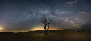PhotoVivo Gold Medal - Lihua Cui (China)  Starry Years