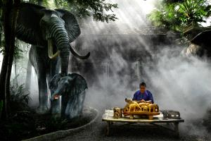 PhotoVivo Honor Mention e-certificate - Roger Khoo (Singapore)  Elephant Crafter