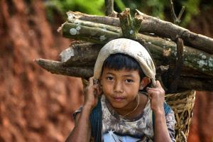 BPC Merit Award - Wunna Win (Myanmar)  Fire Wood Carrying Boy
