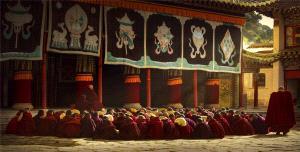 APU Honor Mention e-certificate - Zeng Yan (China)  Dharma Assemble