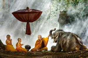 BPC Merit Award - Say Boon Foo (Malaysia)  Elephant With Monk 2