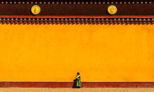APAS Honor Mention e-certificate - Jixin Zhang (China)  Wait For