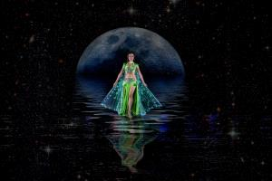 PhotoVivo Gold Medal - Khaing Sandar Tin (Singapore)  Queen Of The Night